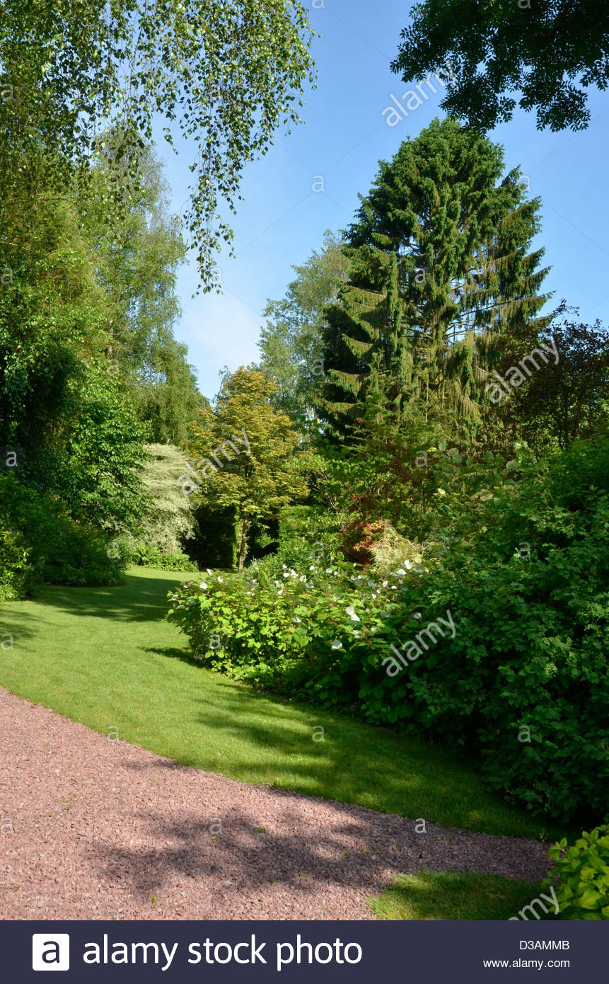 lawn, softwood lumber, gravel, the gardens of Séricourt, remarkable Garden, Séricourt, France, 62, Pas - Stock Image