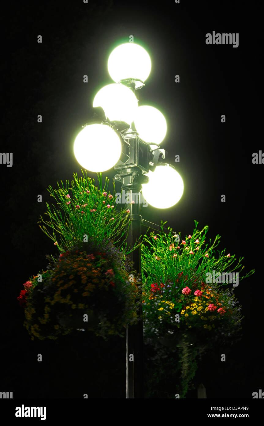 colourful colorful hanging baskets illuminated illuminate lit lighting street lights victoria vancouver island canada - Stock Image