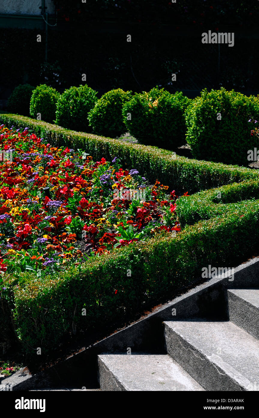 Italian Garden section area Butchart Gardens Brentwood Bay Victoria British Columbia Canada terraced hedging box - Stock Image