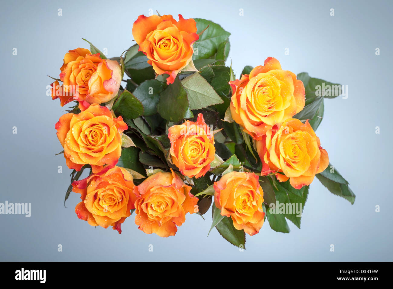 Bouquet of red and yellow roses flowers top view above light blue bouquet of red and yellow roses flowers top view above light blue background izmirmasajfo Image collections