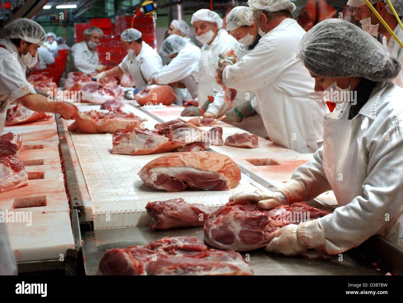 (dpa) - Butchers cut pork meat at a production line at the Suedost Fleisch company in Altenburg, Germany, 11 December - Stock Image
