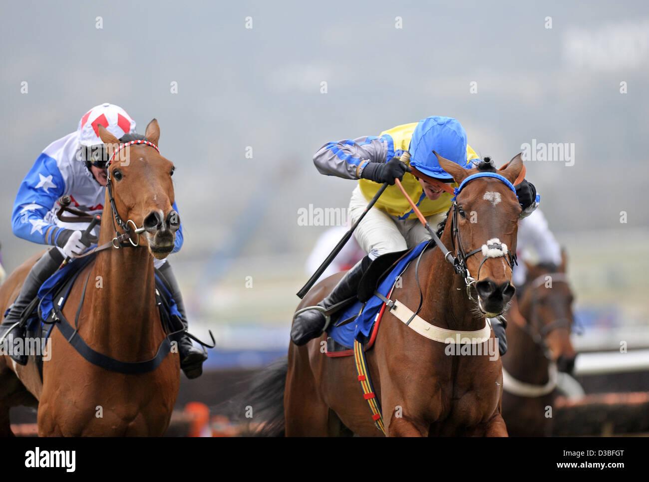 Jockeys race their horses during The Cheltenham Festival an annual horse racing event in England Stock Photo