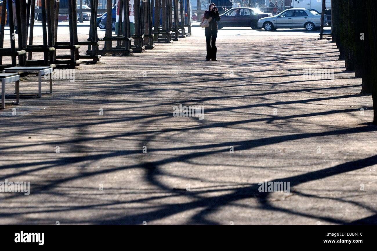 (dpa) - The sun shines on trees so that they cast long shadows on the street and create an Mediterranean atmosphere - Stock Image