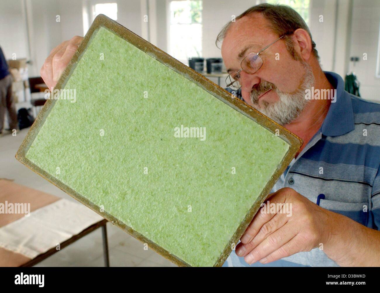Seaweed Paper Stock Photos Seaweed Paper Stock Images Alamy