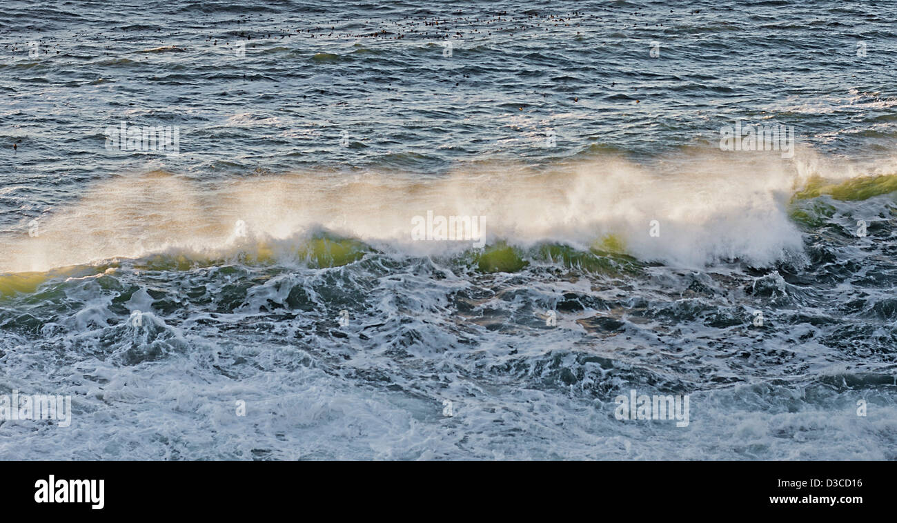 Pacific Ocean - Stock Image