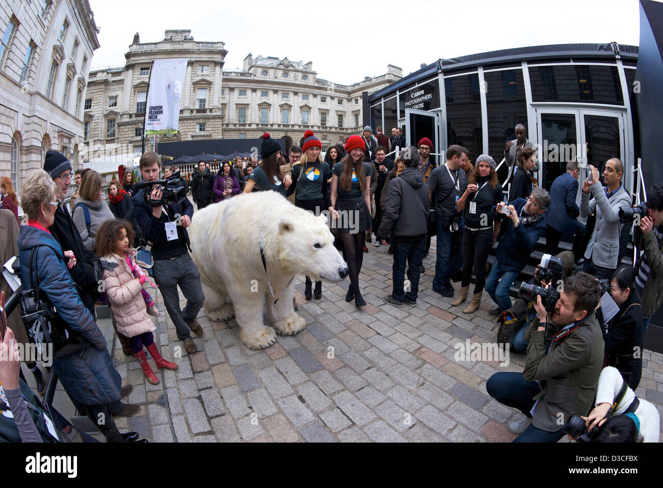 Greenpeace Polar bear visits London Fashion Week 15th February 2013 Somerset House, London, England, UK, GB Stock Photo