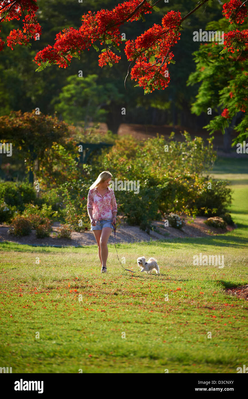 Young woman walking her dog in the park Stock Photo