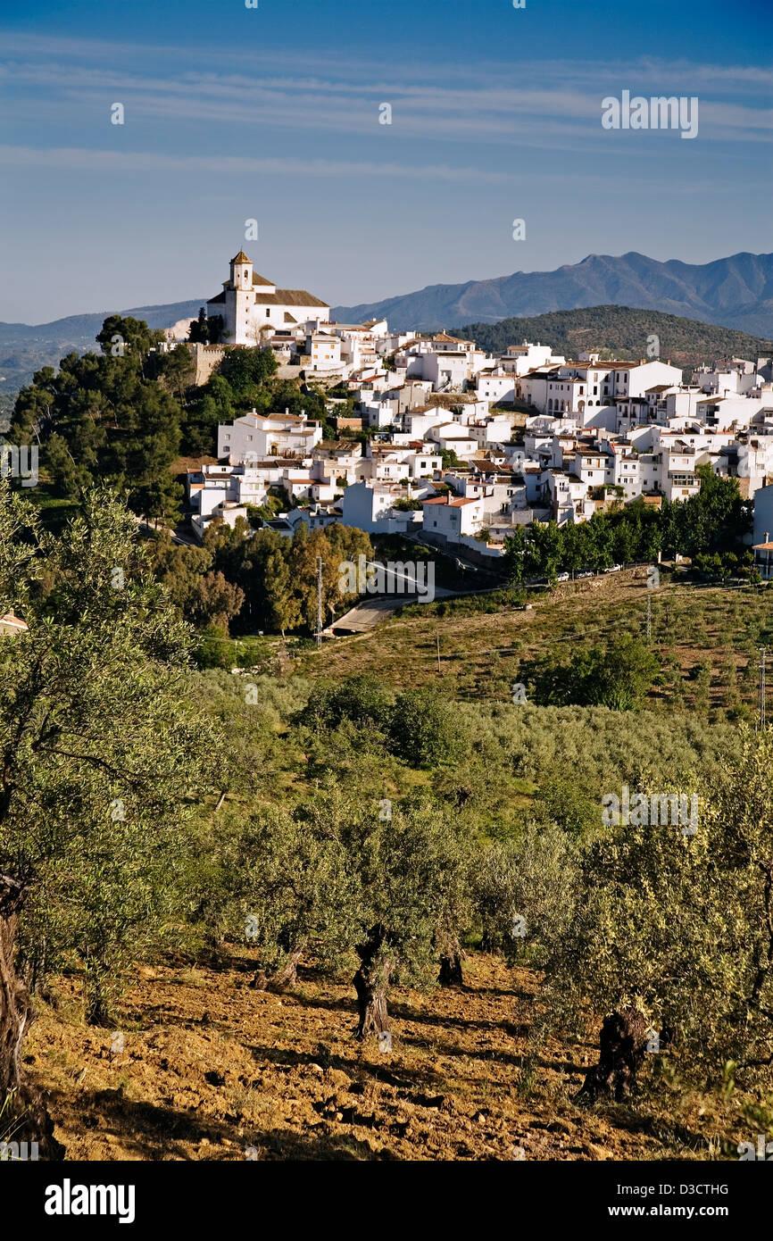 Alozaina village Serrania de Ronda Malaga Andalusia Spain - Stock Image