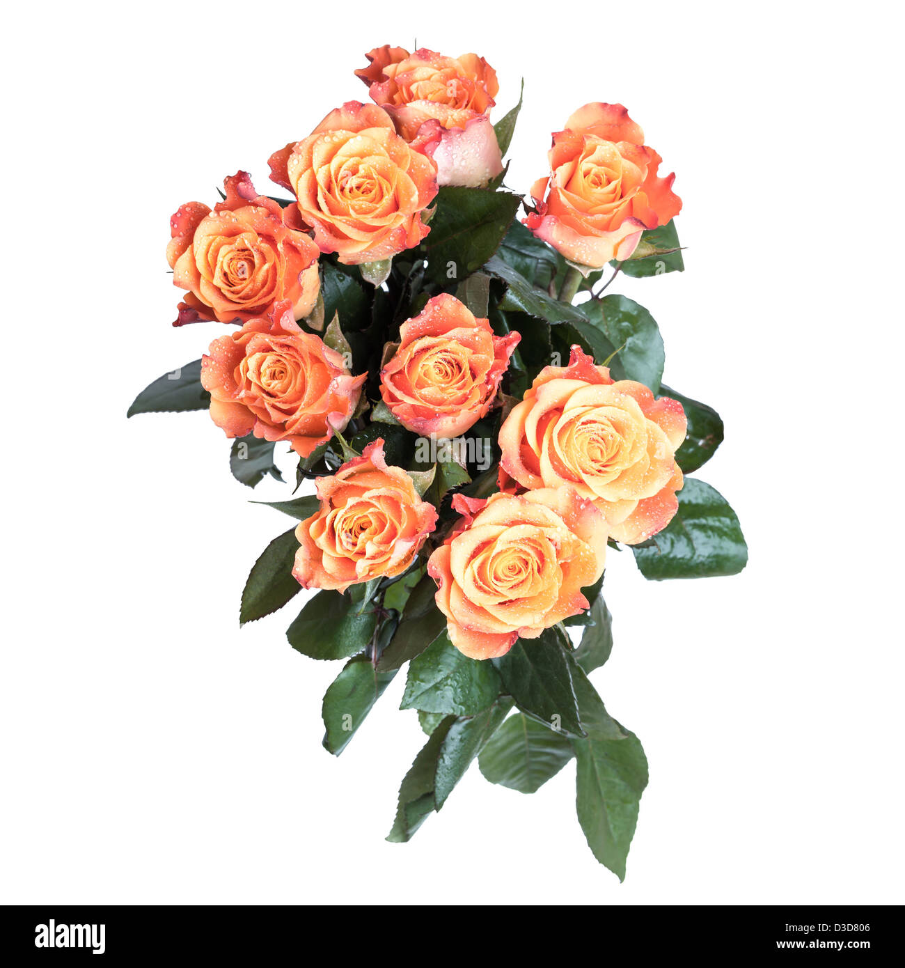 Bouquet of red and yellow roses flowers top view above isolated on bouquet of red and yellow roses flowers top view above isolated on white background izmirmasajfo Images