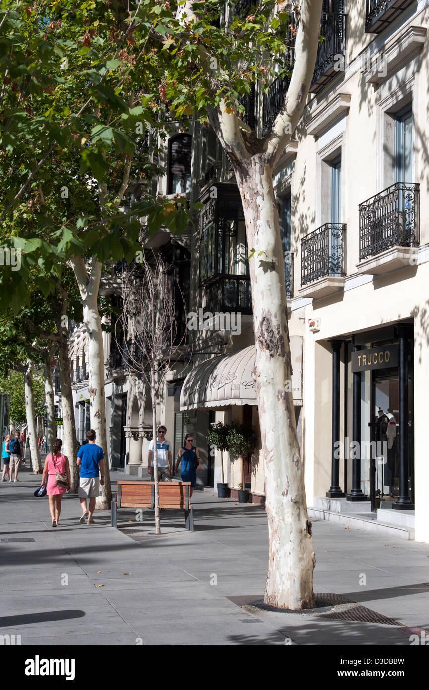 Calle de Serrano, Madrid, Spain - Stock Image