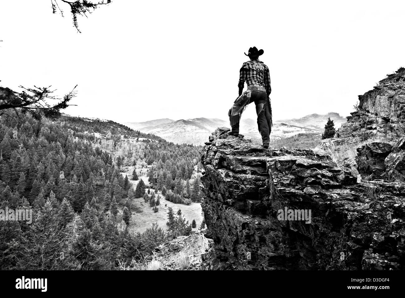 Wrangler surveying forestry view from Sheeps rock, Montana, USA - Stock Image