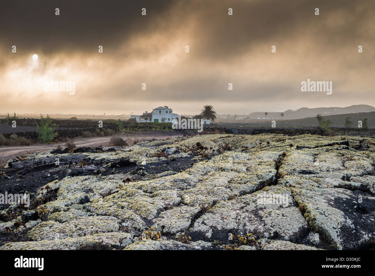 Misty early morning on the lichen-covered pahoehoe or ropy lava near Masdache, Lanzarote, Canary Islands, Spain - Stock Image