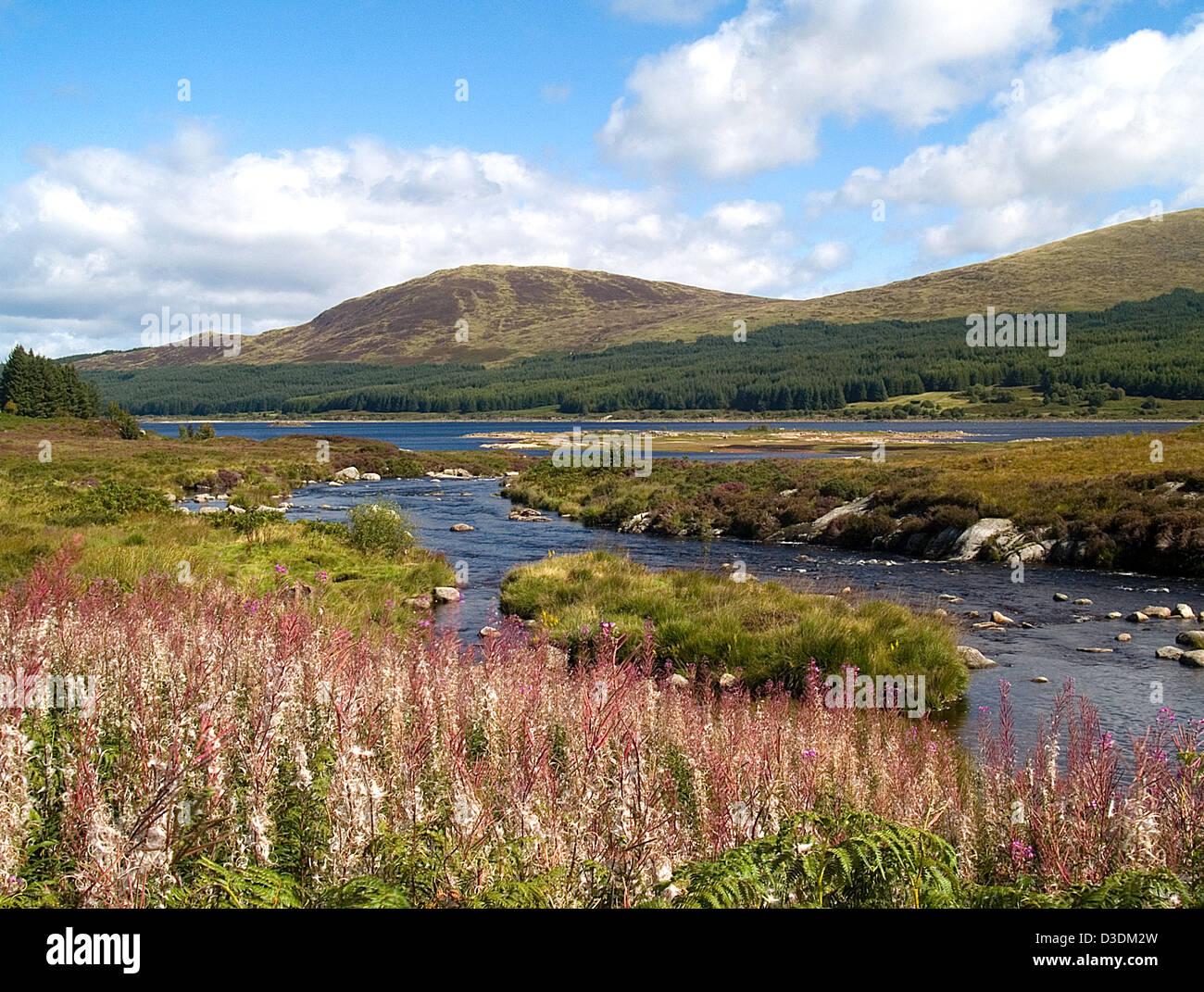 Loch Doon, Galloway Forrest Park - Stock Image