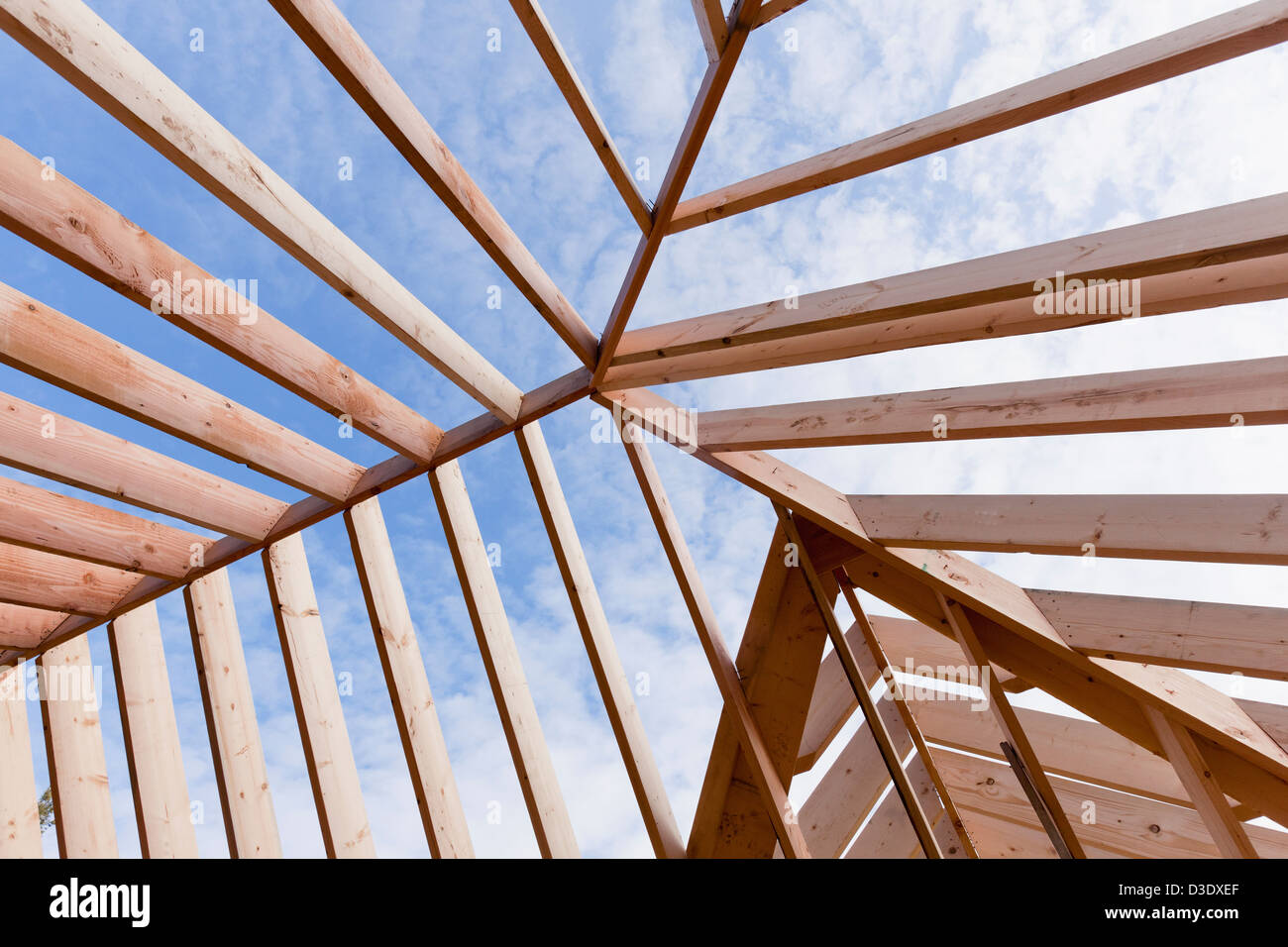 detail of roof rafter structure - Roof Rafter