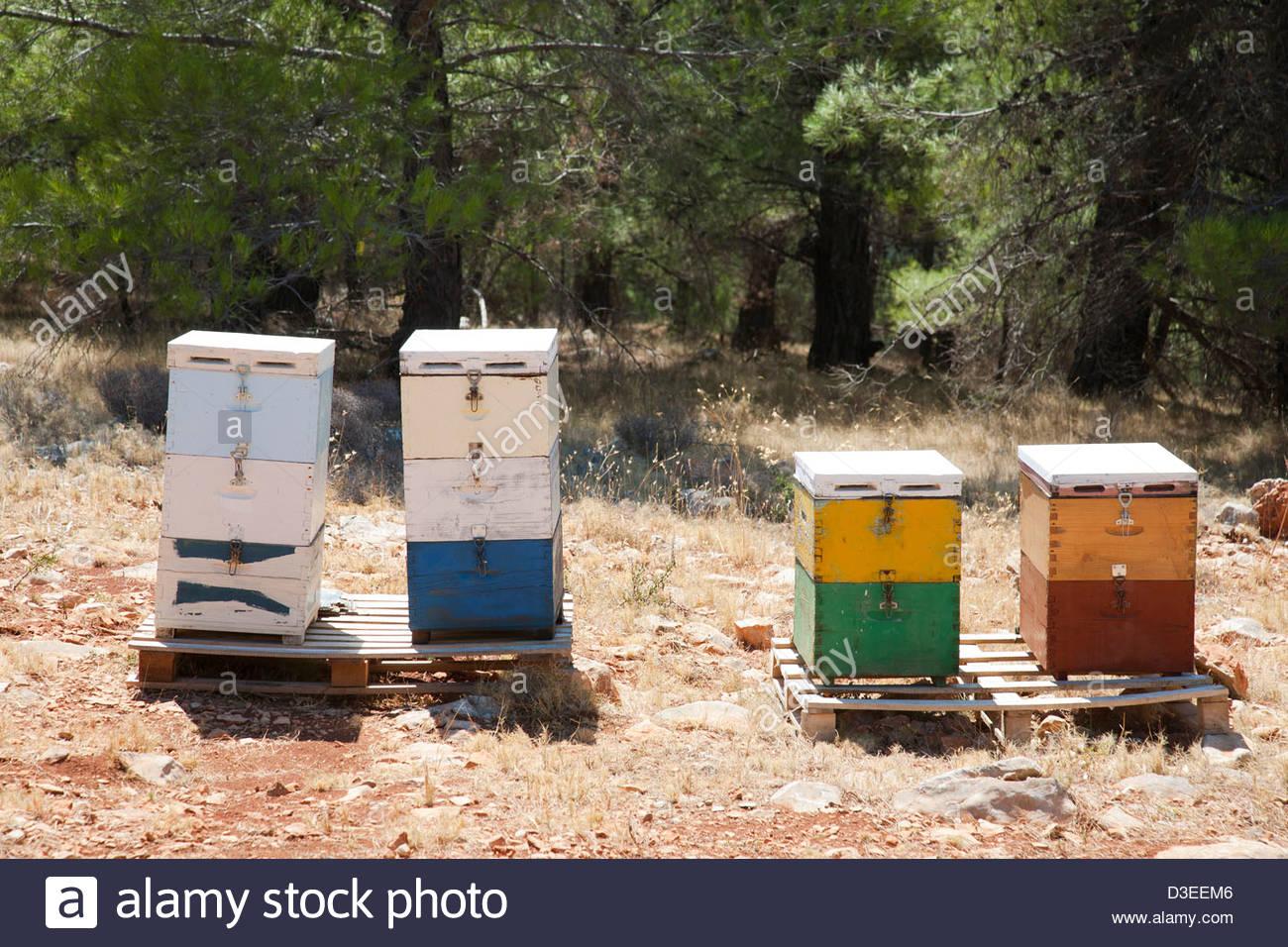 hives,island of chios,north east aegean sea,greece,europe - Stock Image