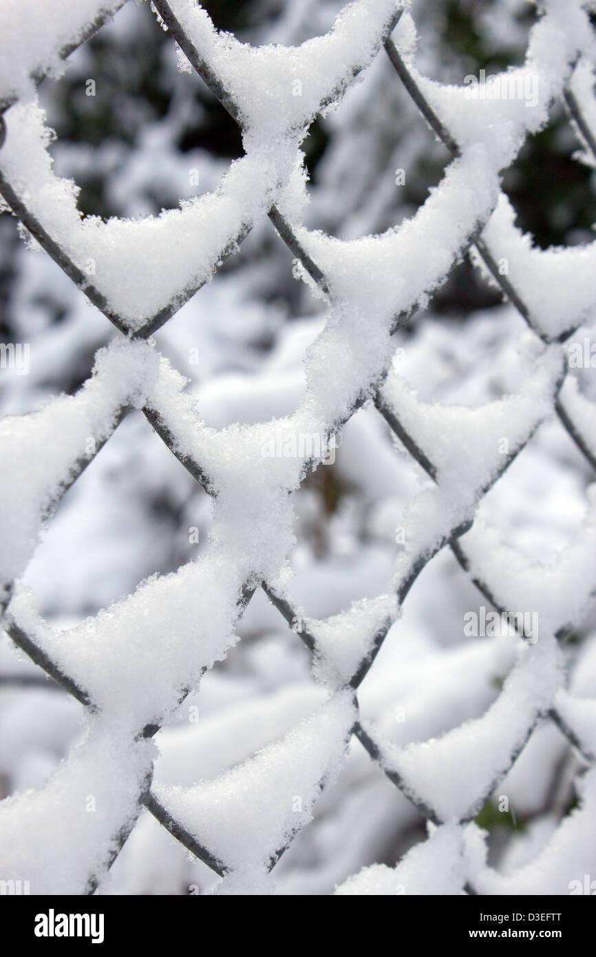 Close up of snow covered wire fence - Stock Image