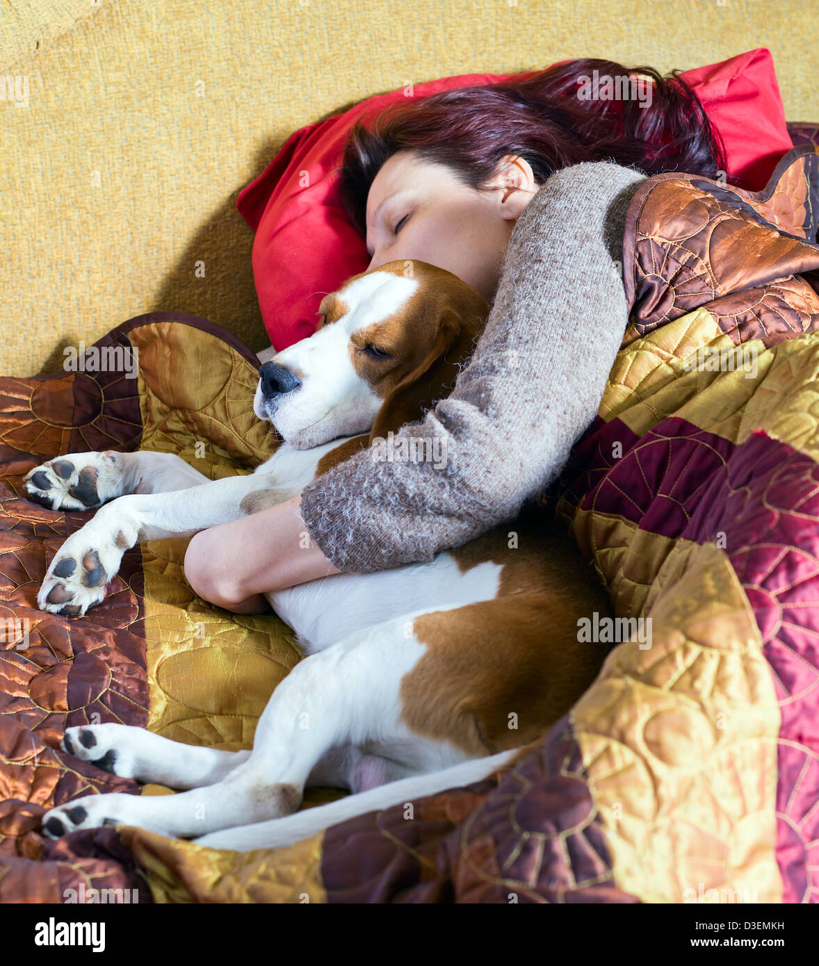 The sleeping woman and its dog - Stock Image
