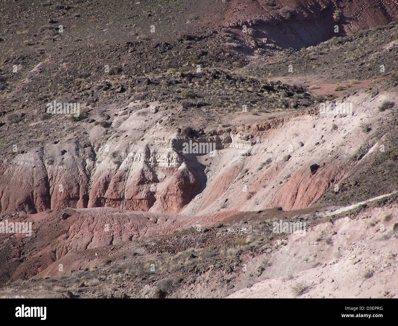 Unconformity, Bidahochi Formation and Chinle Formation, Petrified Forest National Park - Stock Image