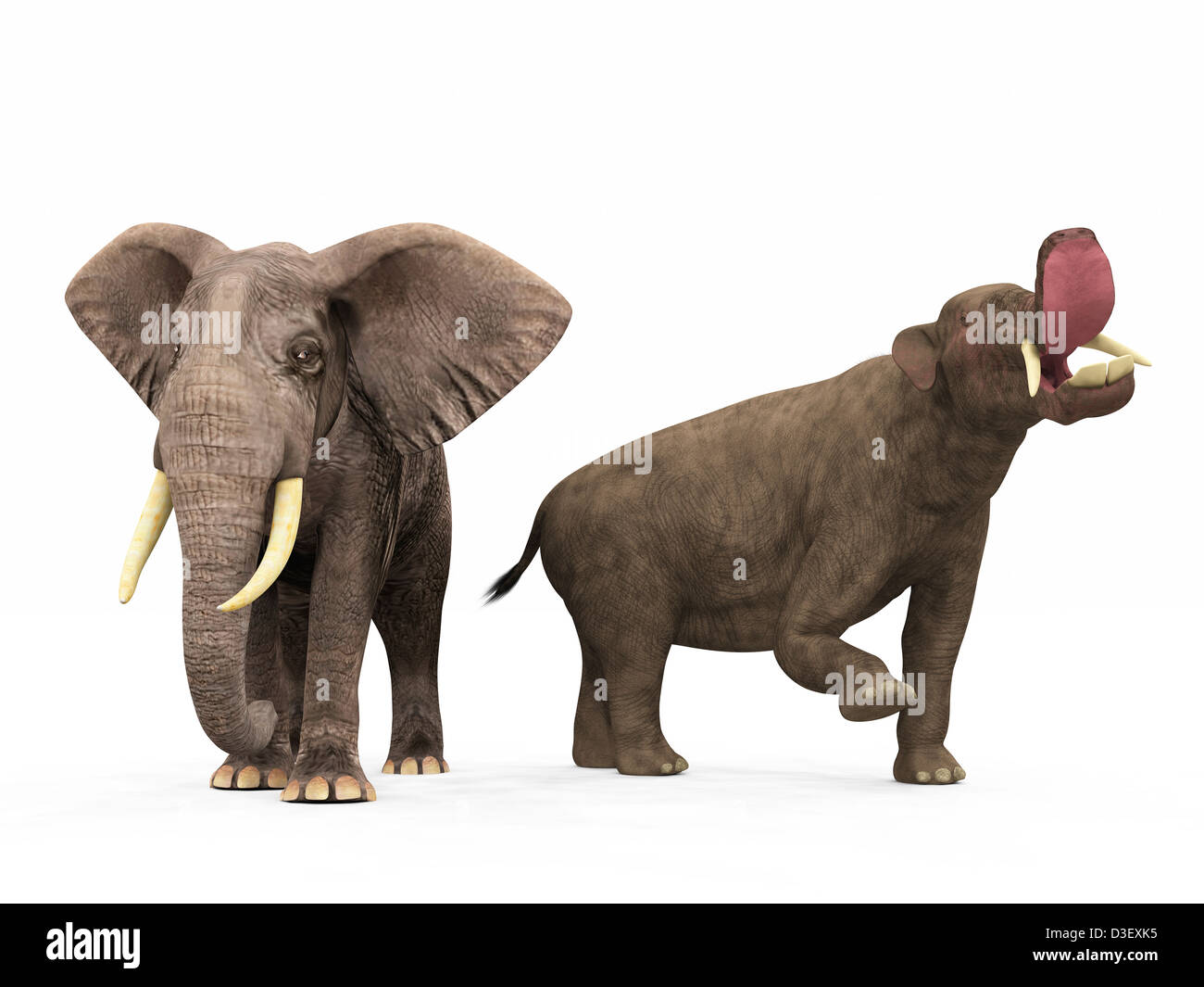 An adult Platybelodon compared to a modern adult African Elephant. - Stock Image