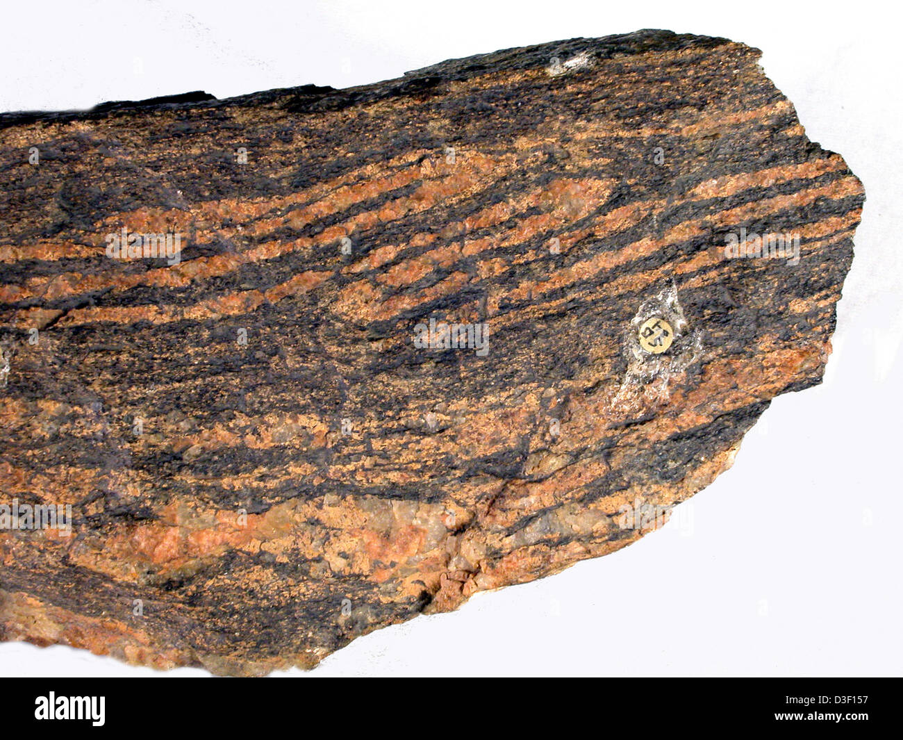 Grand Canyon Vishnu Schist Stock Photos Amp Grand Canyon