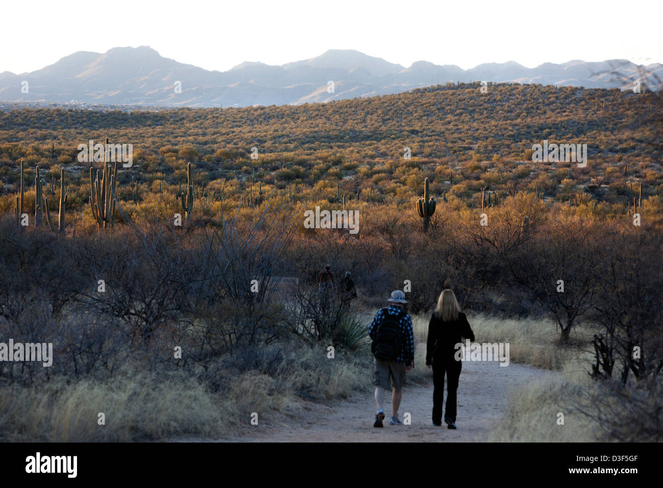 Two people walking on a trail in Catalina State Park near Tucson Arizona, USA - Stock Image