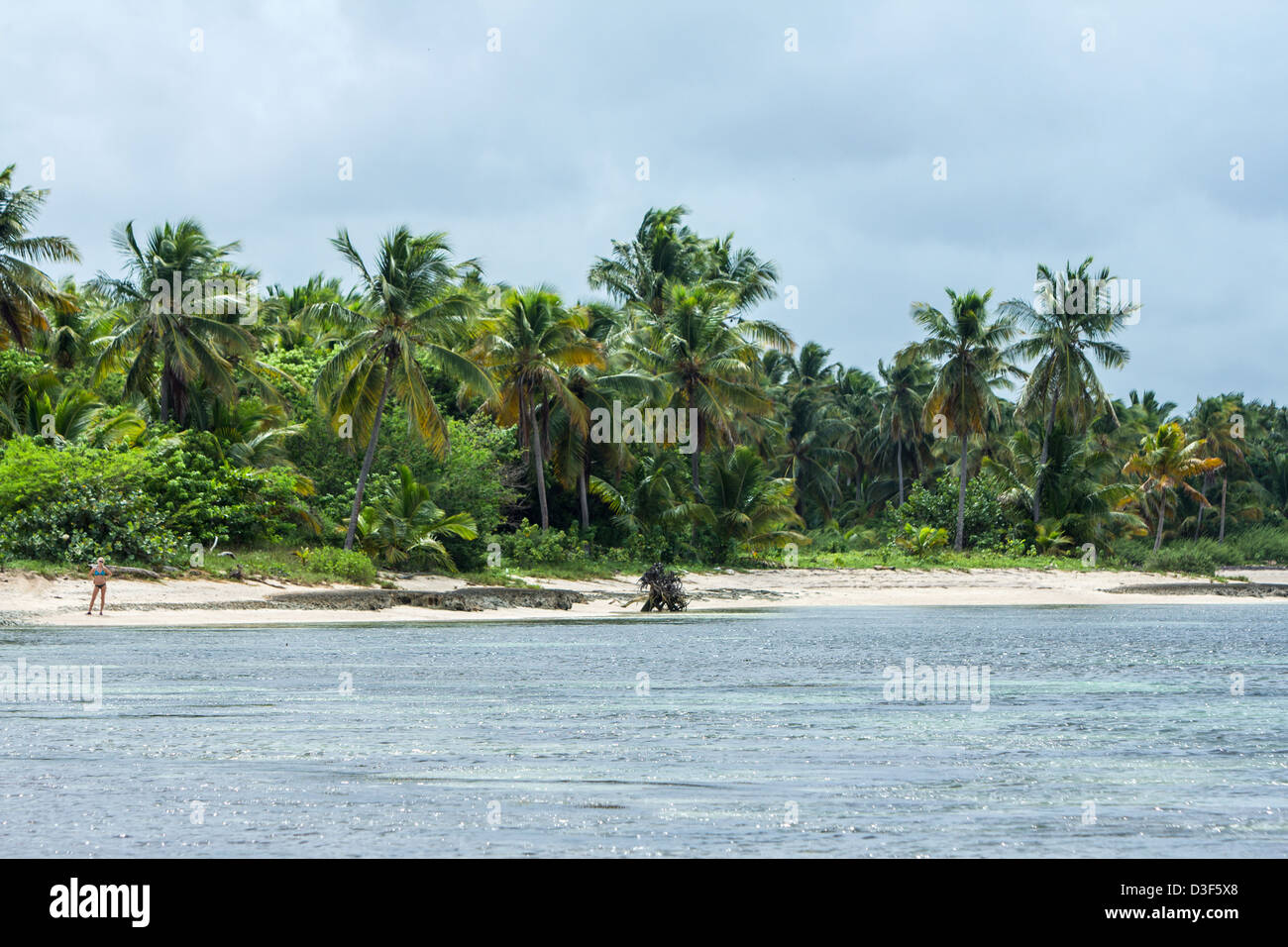 Girl in a swimsuit on a desert beach covered with coconut palms - Stock Image