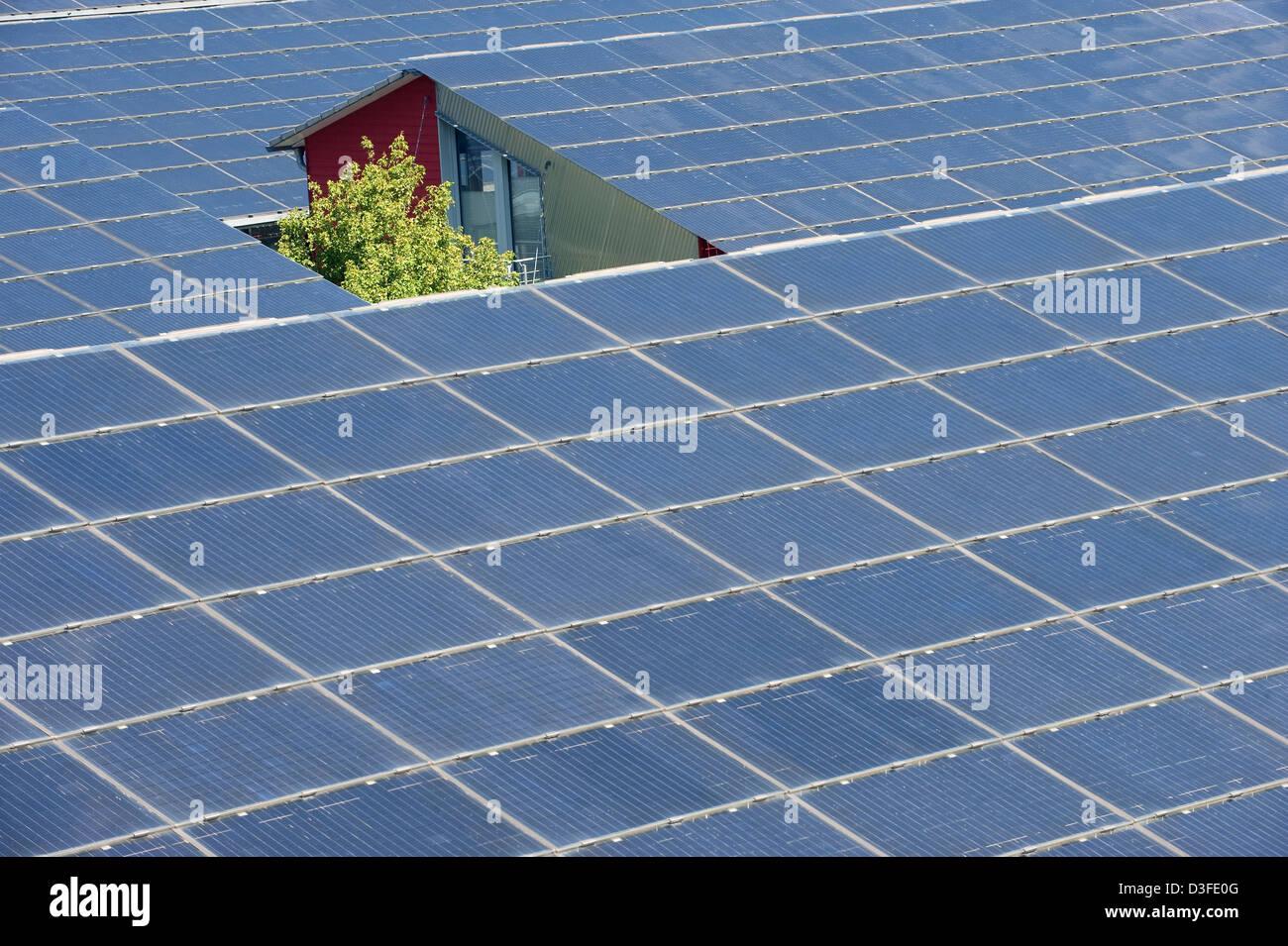 Freiburg, Germany, solar panels on the roofs in Vauban - Stock Image
