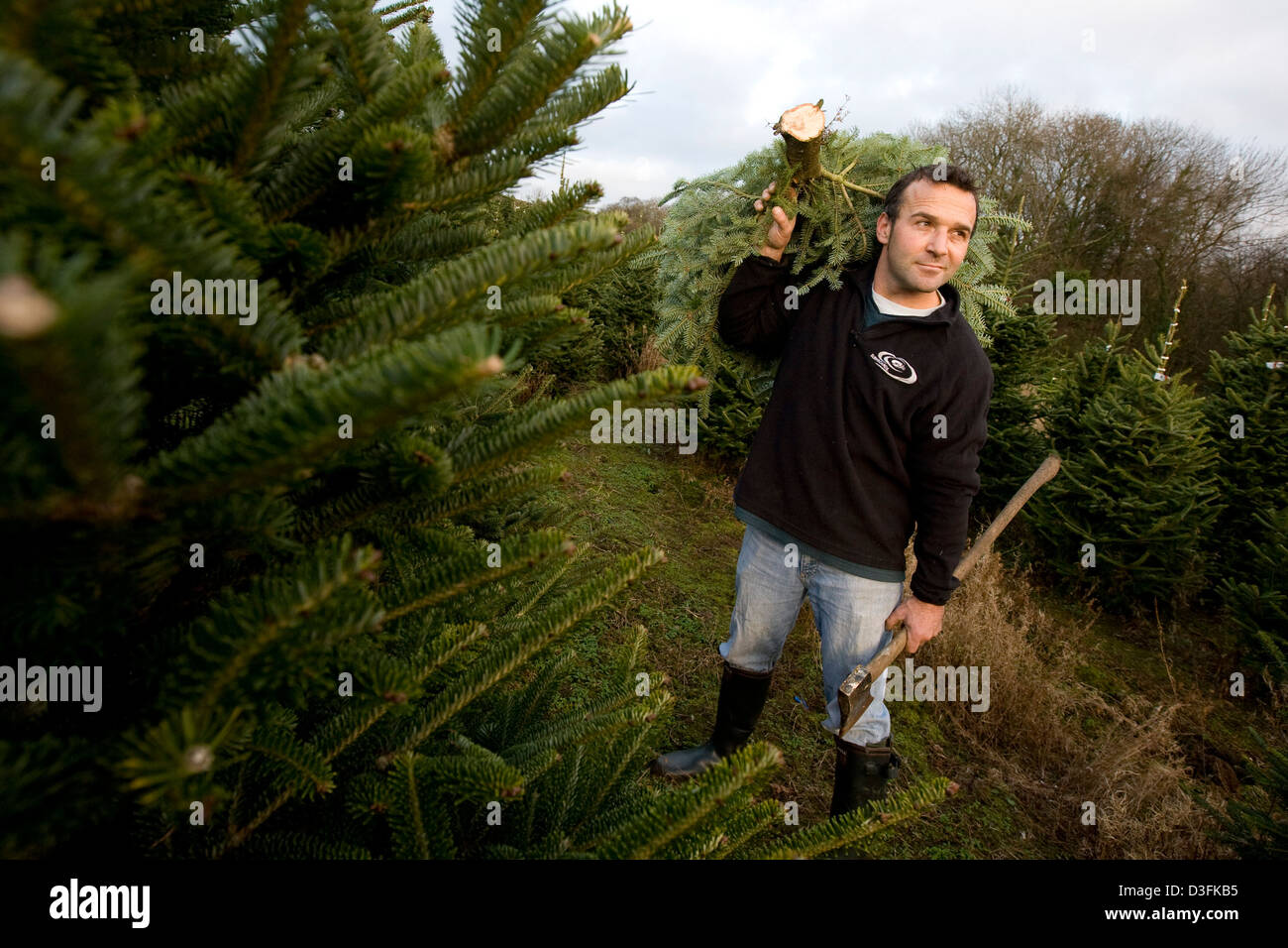 26 11 08 Robert Morgan Of Poundffald Farm Three Crosses Gower With Stock Photo Alamy