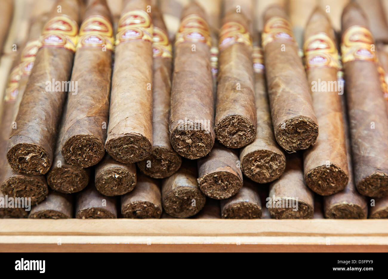 Little Havana Cigar Factory Stock Photos & Little Havana