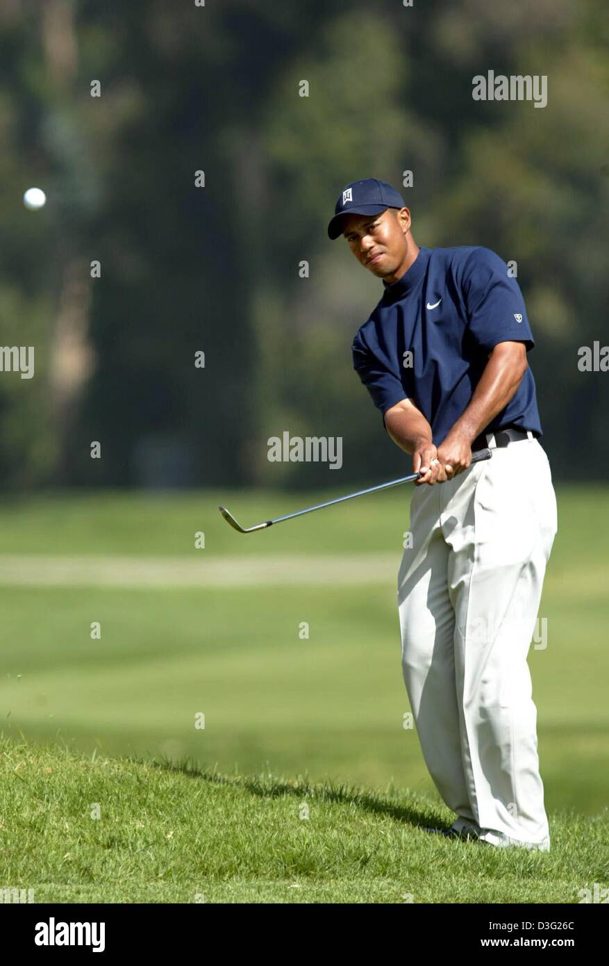 tiger woods hitting golf ball stock photos  u0026 tiger woods