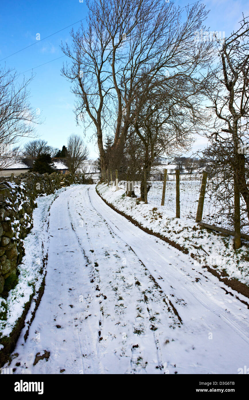 A snow covered farm track bordered by dry stone wall and trees - Stock Image