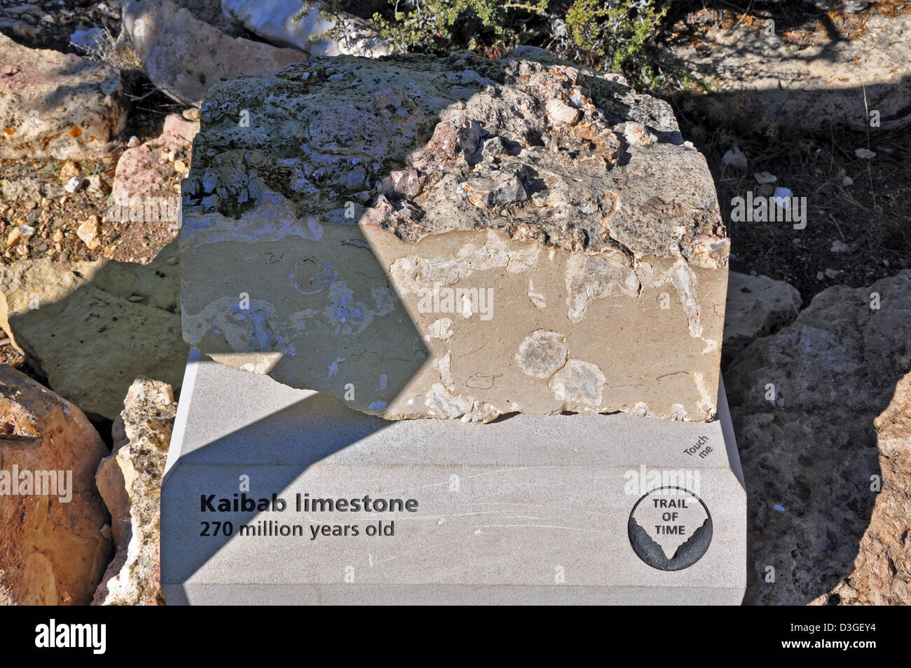 Grand Canyon Trail of Time - Kaibab Limestone - 0454 - Stock Image