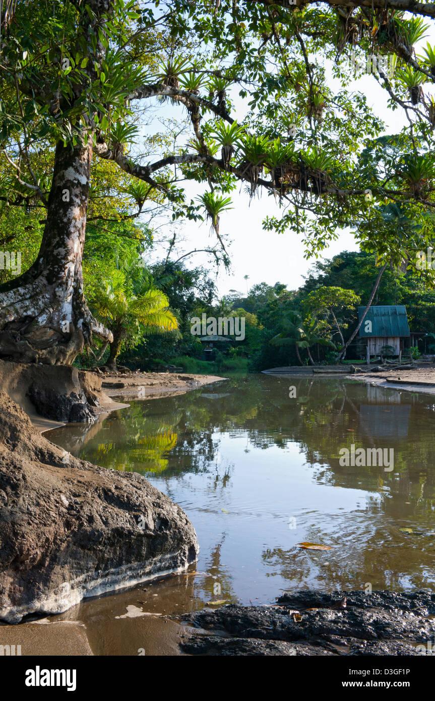 Agujitas River in Drake Bay on Osa Peninsula of Costa Rica - Stock Image