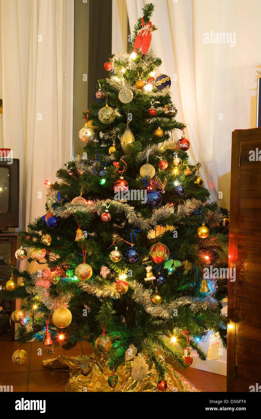 europe, italy, tuscany, siena, chritmas tree - Stock Image