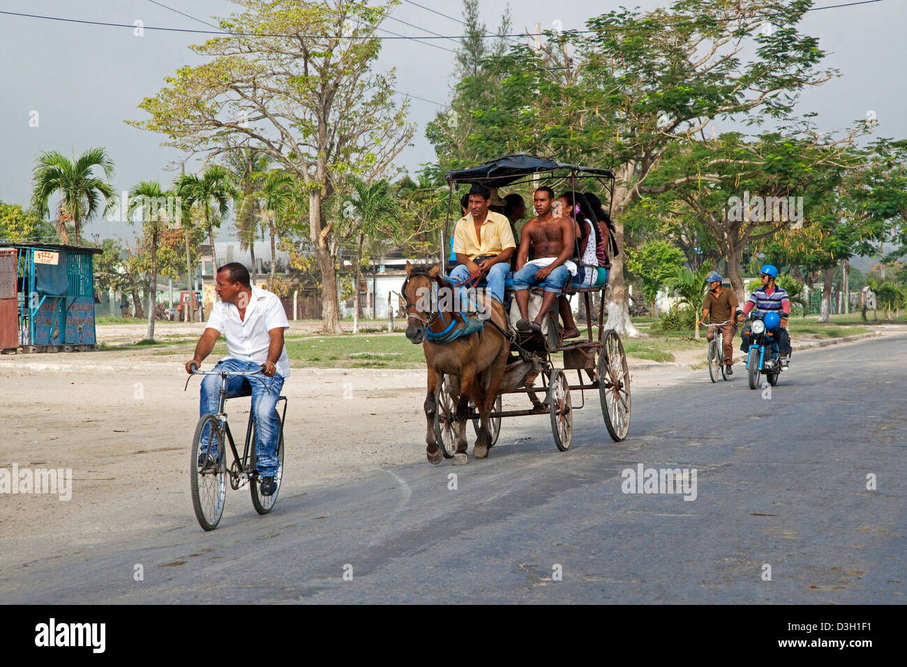 Public transport by horse and carriage in street, Granma, Cuba, Caribbean - Stock Image