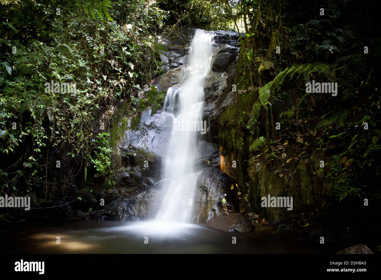 Beautiful waterfall in the Amazon Rain forest Ecuador Stock Photo