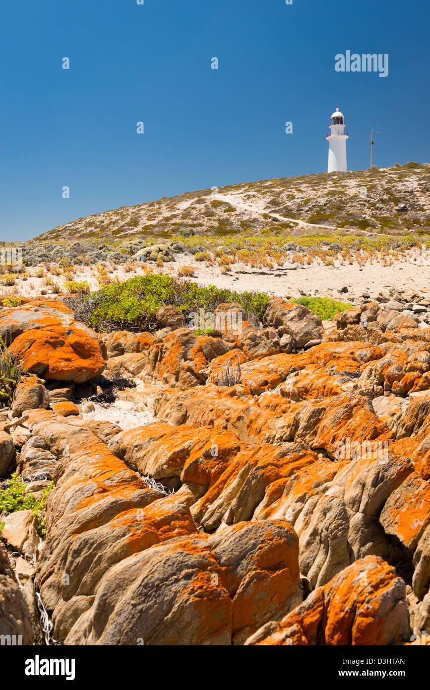 Dangerous rocks surround the lighthouse at Corny Point, South Australia. - Stock Image