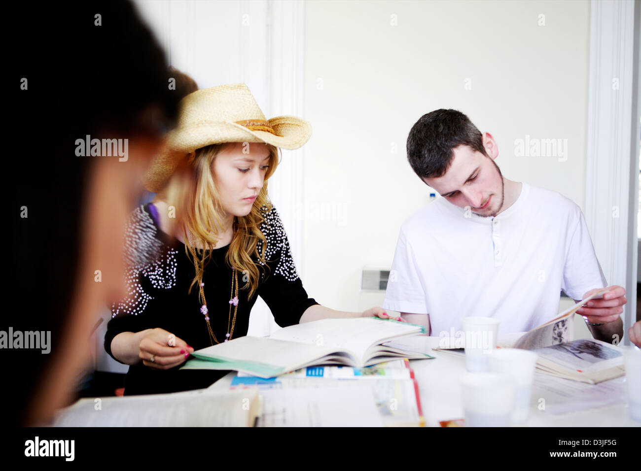 Students preparing for exams, studying. Group study of boys and girls. preparing for examinations, GCSEs and MATS - Stock Image