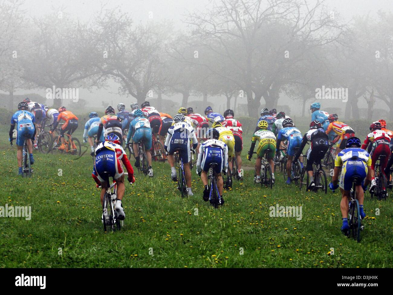 (dpa) - Cycling pros take a short cut and ride into foggy weather during the ProTour Amstel Gold Race in Valkenburg, Stock Photo