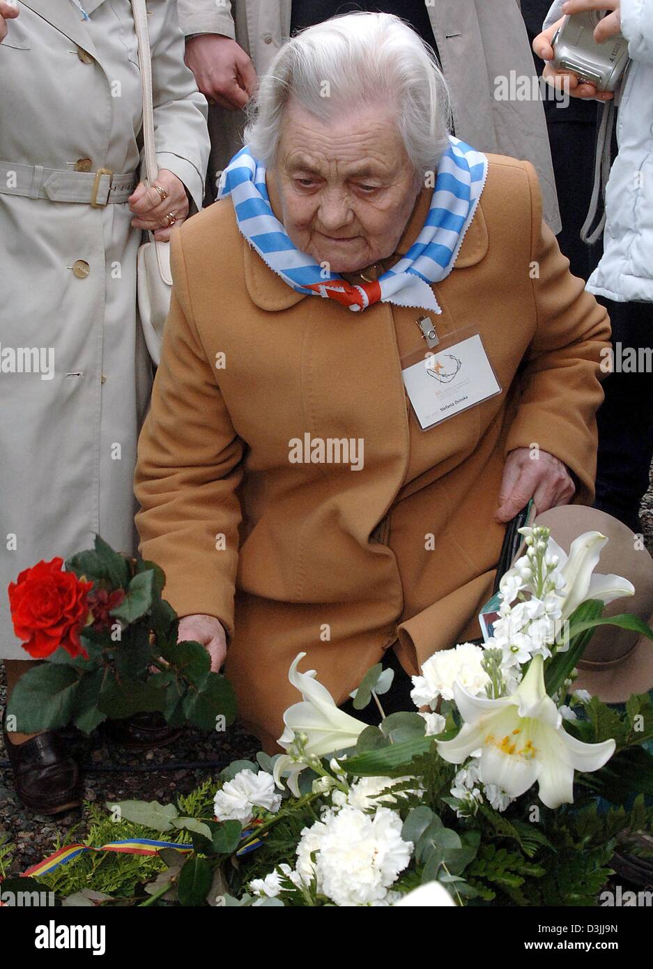 (dpa) - Concentration camp survivor Stefania Osinska puts down flowers at the concentration camp memorial place Stock Photo