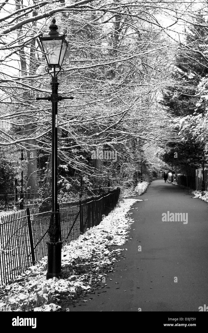 Cambridge way winter view - Stock Image