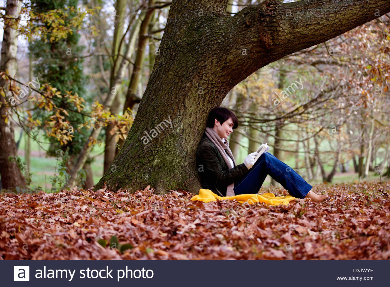 A Woman Sitting Under A Tree In Autumn Time Reading A