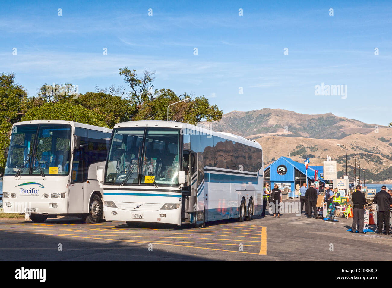 Coaches and tourist industry workers wait for passengers to land in Akaroa, New Zealand. - Stock Image