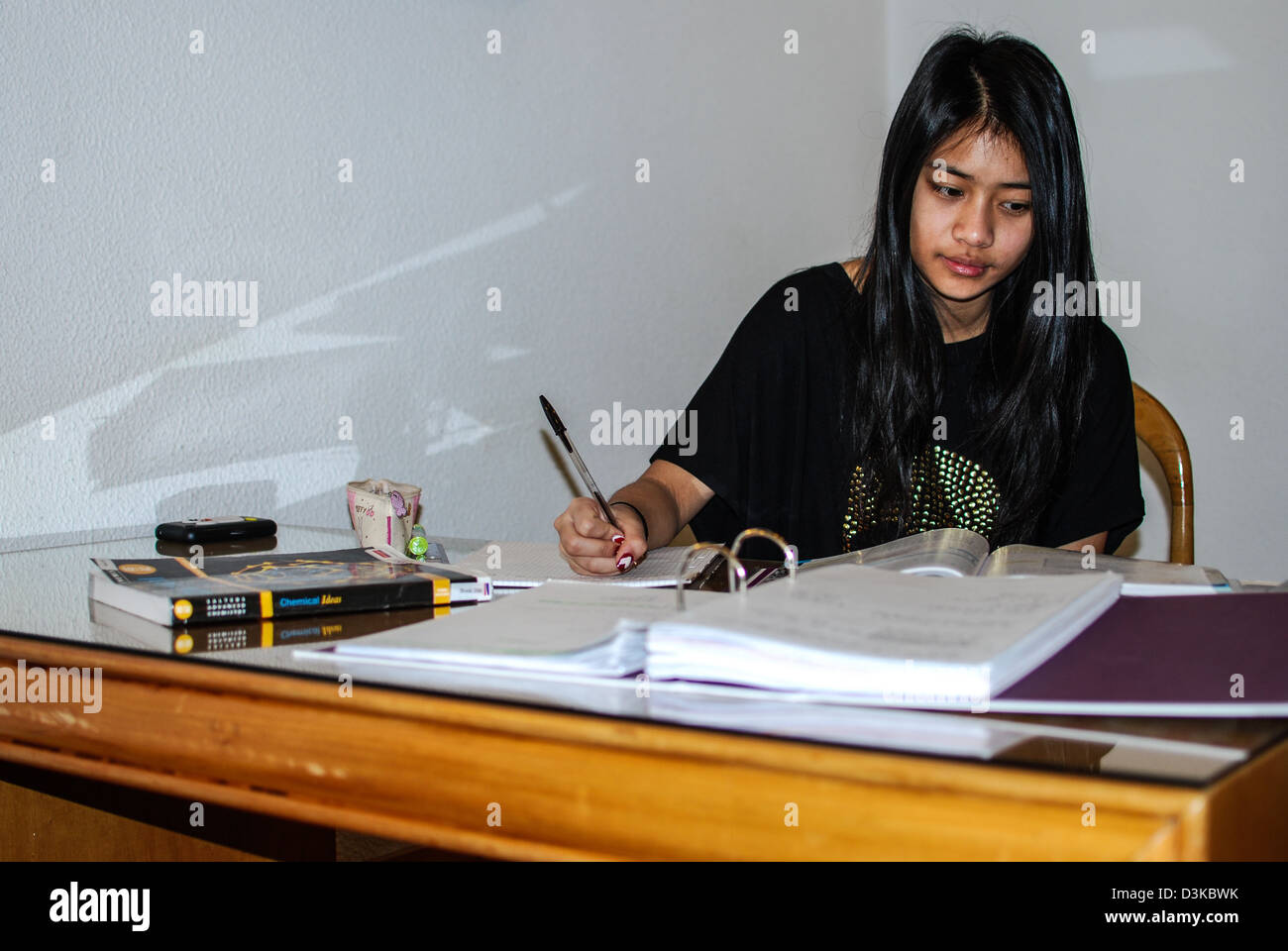 a student studying - Stock Image
