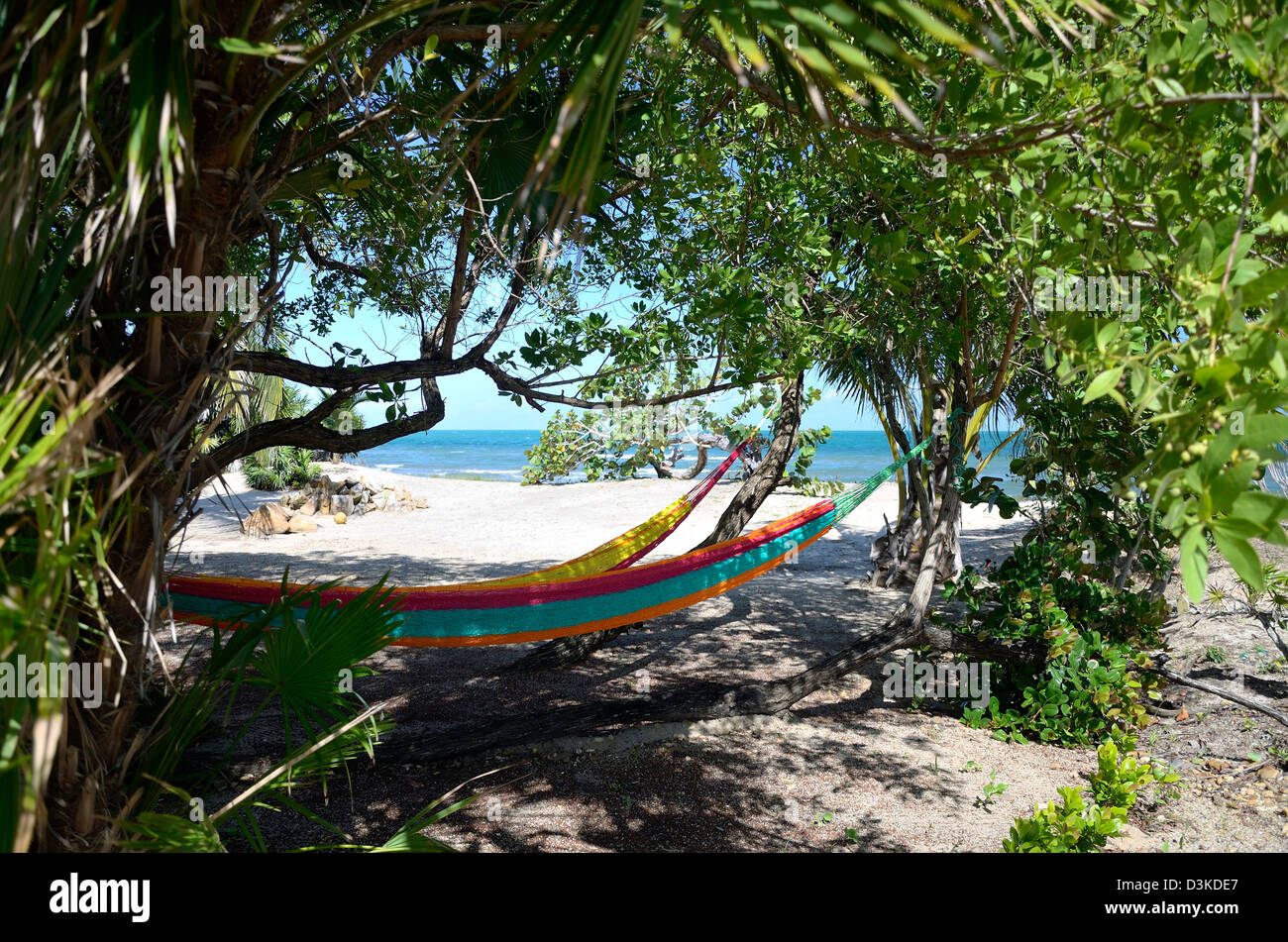 two hammocks stung beneath trees by a beach in the Caribbean - Stock Image