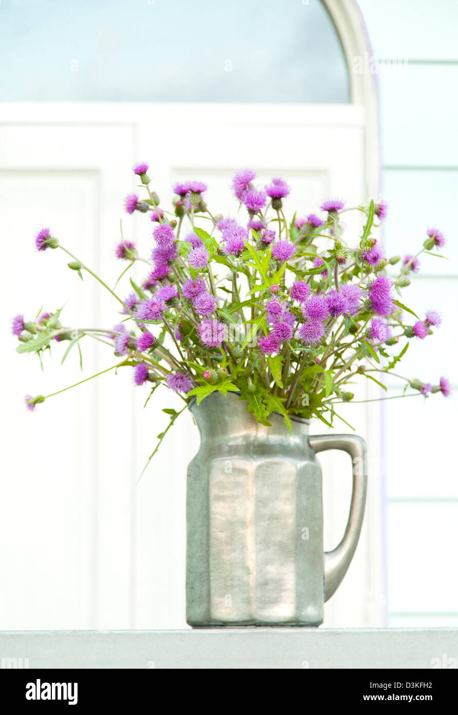 Flower Vase With Thistle Stock Photos & Flower Vase With Thistle ...