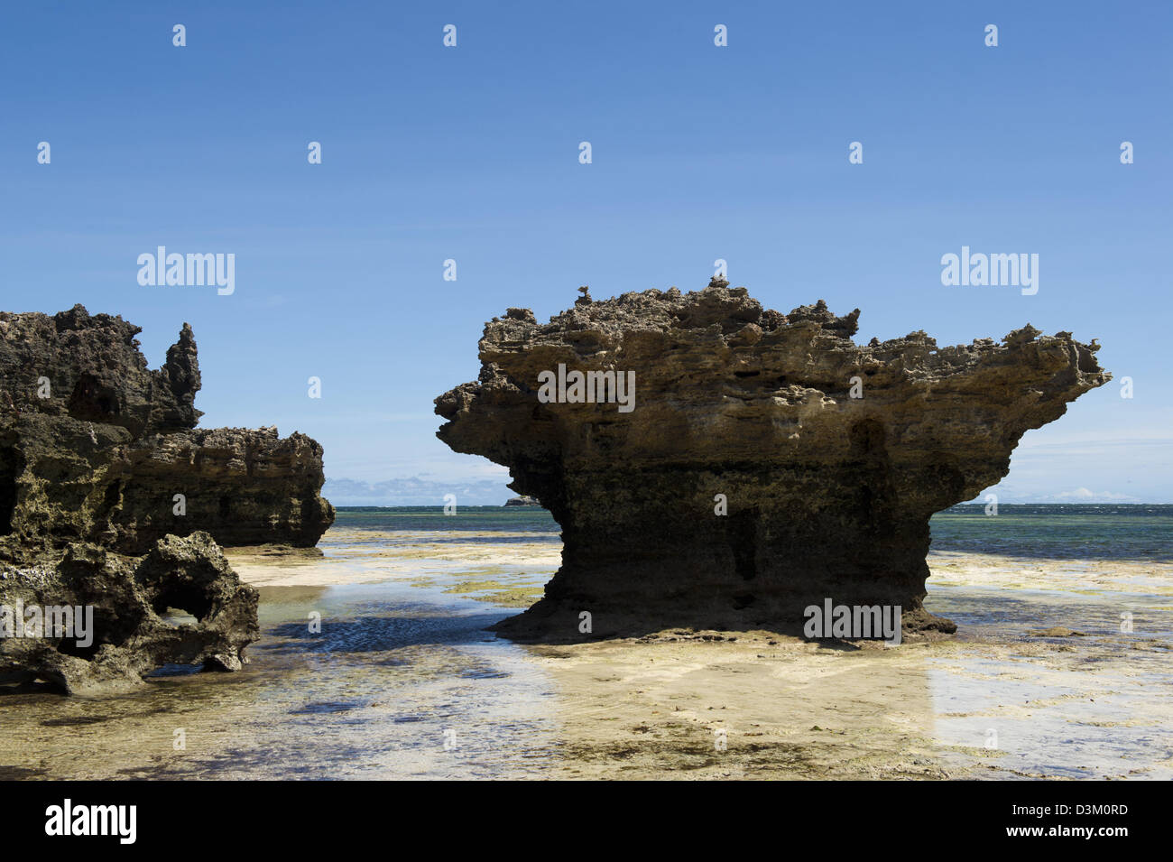 Coral outrcrop, Turtle Bay, Watamu, Kenya - Stock Image