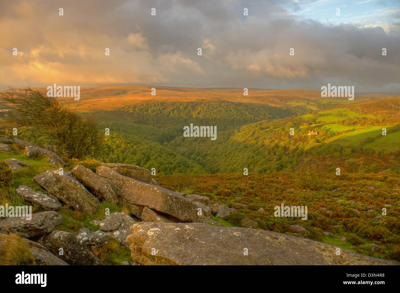 Early morning golden light over the Dart valley - looking from Mel Tor Stock Photo