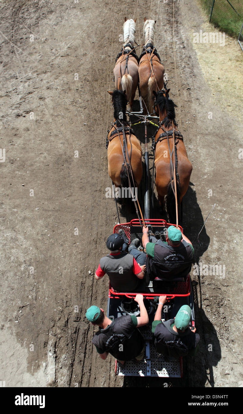 Brueck, Germany, aerial view, competition over draft horses - Stock Image