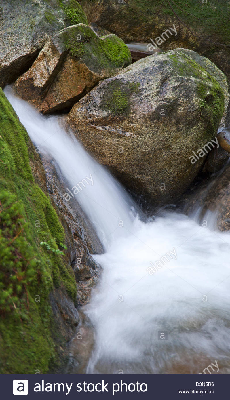 Pristine scenic waterfall amongst mosses in a rain forest - Stock Image